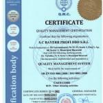 Deratizari Dezinsectii Dezinfectii ISO 9001-2008